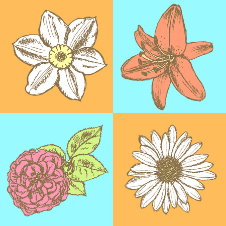 Lily, daisy and rose, narcissus flower sketch, vector seamless pattern   Vector