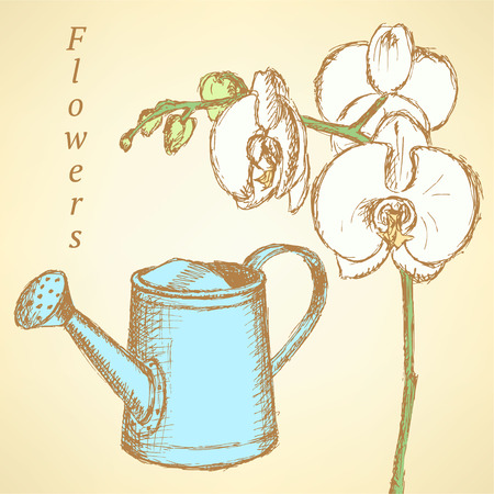 Sketch orchid and watering can, vector vintage background Vector