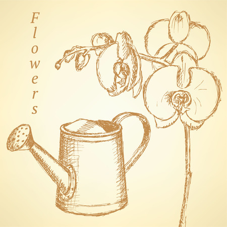 Sketch orchid and watering can on vintage background Vector