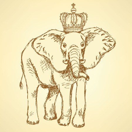 Sketch elephant in crown, vintage background  Vector