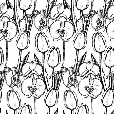 Sketch tulip and orchid, vector vintage seamless pattern   Vector