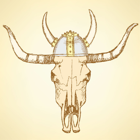 Sketch texas longhorn steer in viking helmet  Vector