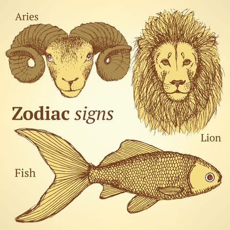 Sketch zodiac ram, fish and lion, background Vector