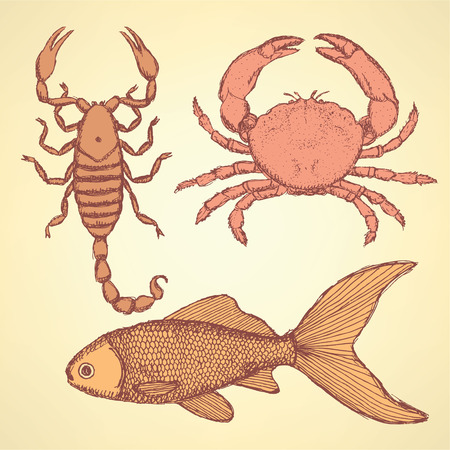Sketch cute crab, scorpion and fish  in vintage style, background Vector