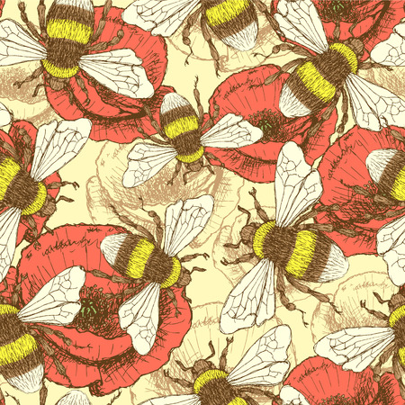 Sketch bee and poppy in vintage style, vector seamless pattern Illustration