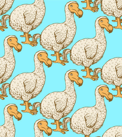 ornithological: Sketch dodo bird in vintage style, vector seamless pattern Illustration