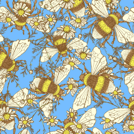 daisy flower: Daisy flower and bees, vector seamless pattern