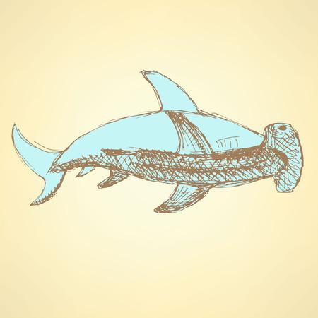pez martillo: Tibur�n martillo Bosquejo en el estilo vintage, vector