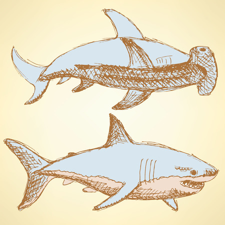 hammer head: Sketch scary sharks in vintage style, vector