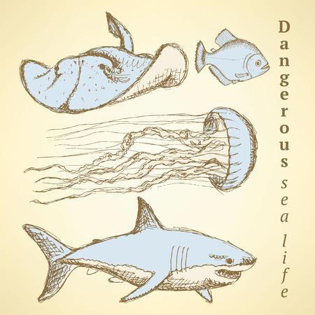 sea creatures: Sketch sea creatures in vintage style, vector