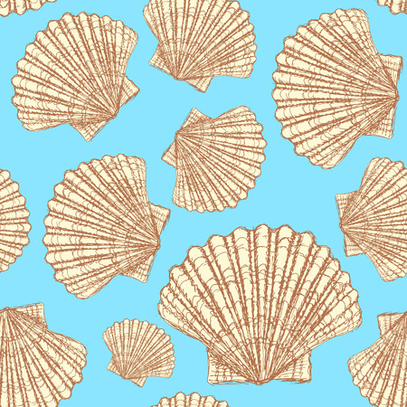 Sketch sea shell in vintage style, vector seamless pattern Illustration
