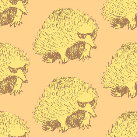 echidna: Sketch cute echidna in vintage style, vector seamless pattern