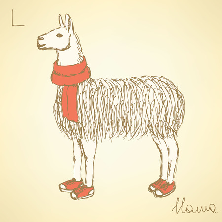 alpaca: Sketch fancy llamal in vintage style, vector Illustration
