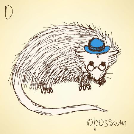 possum: Sketch fancy opposum in vintage style, vector Illustration