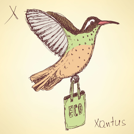 x games: Sketch fancy xantus in vintage style, vector