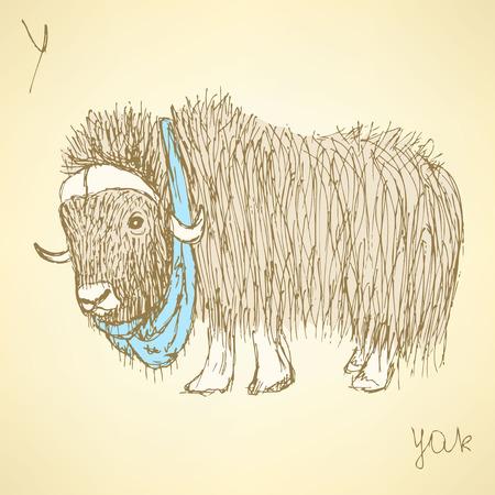 yak: Sketch fancy yak in vintage style, vector