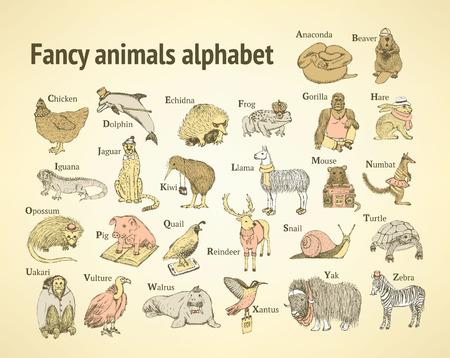 Sketch fancy animals alphabet  in vintage style, vector Vector