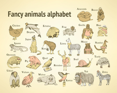 mouse animal: Sketch fancy animals alphabet  in vintage style, vector