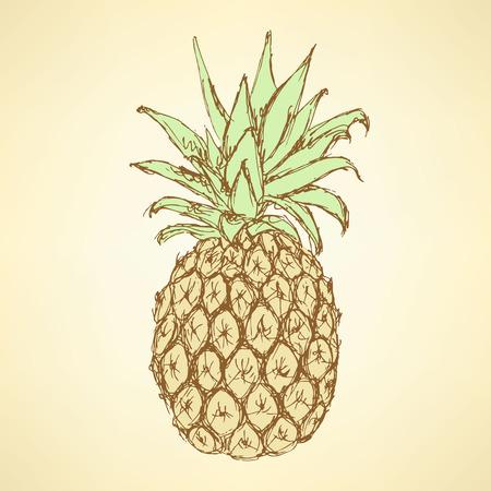 Sketch tasty pineapple in vintage style, vector