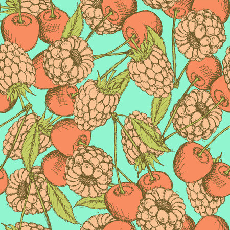 Sketch raspberry and cherry in vintage style, vector Vector