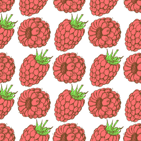 Sketch tasty raspberry in vintage style, vector seamless pattern Vector