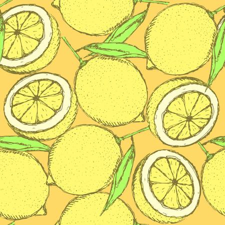 zest: Sketch juicy lemon in vintage style, vector seamless pattern Illustration