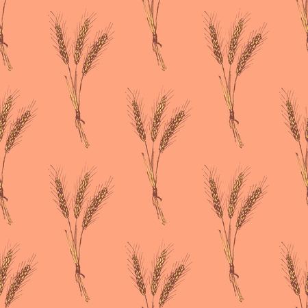 bran: Sketch wheat bran in vintage style, vector seamless pattern
