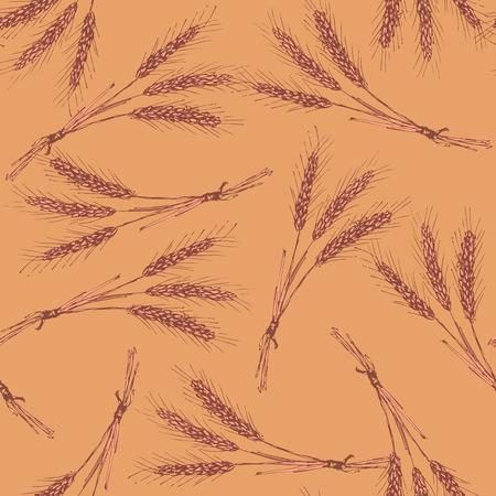 bran: Sketch wheat bran in vintage style