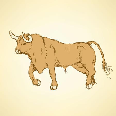 toro arrabbiato: Sketch toro infuriato in stile vintage, vettore Vettoriali