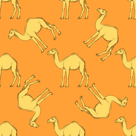 Sketch cute camel in vintage style, vector seamless pattern Illustration