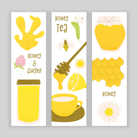 Honey and ginger design concept, vector honey comb and bee, sliced ginger root.