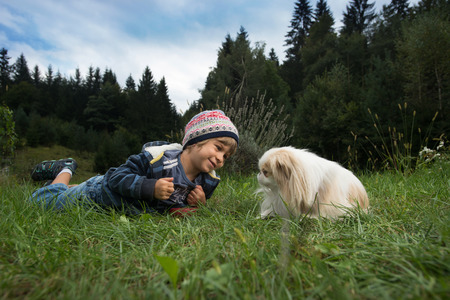 small dog: Cute little boy and his dog rolling on the grass looking at each other