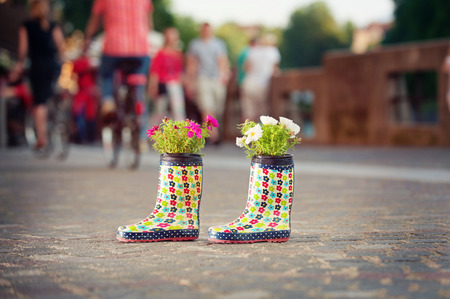 urban gardening: Rubber boots used as flower pots on the city streets. Unusual creative decoration. Stock Photo