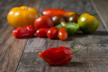 Close up of red hot chilli with colorful tomatoes in background. Shallow depth of field, rustic wooden background.