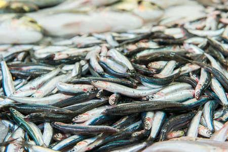 Freshly caught sardines on seafood market