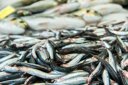 Freshly caught sardines on seafood market