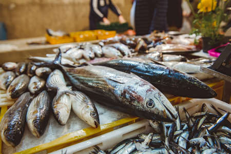 Several type of fresh fish on a mediterranean seafood market.