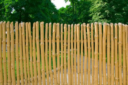 Fence with slats that show the natural wood pattern  photo