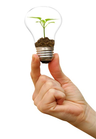 bulb in a hand on a background