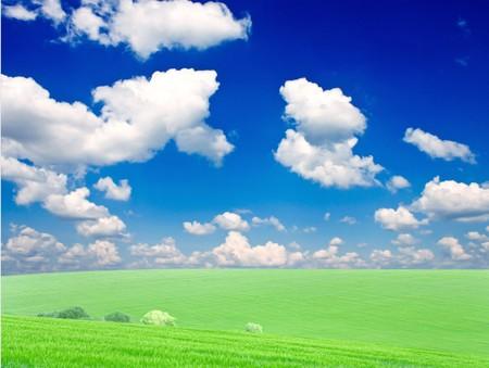 Vhery mach green grass under red sky Stock Photo - 7460241