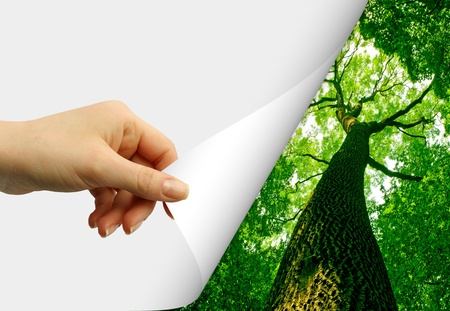 crossing fingers: card blank in a hand