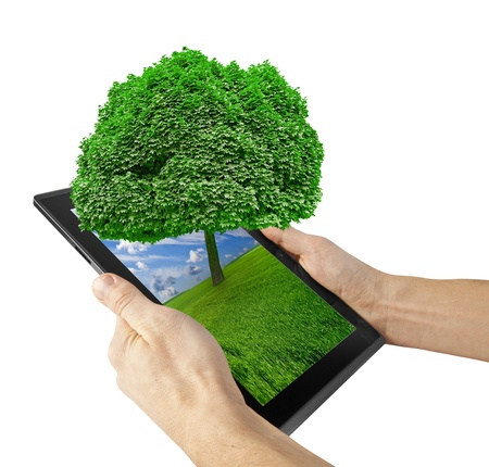 green computing: tablet computer isolated on the white backgrounds. tree