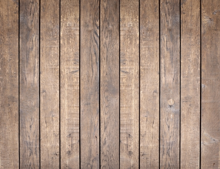 walnut tree: wood texture. background old panels