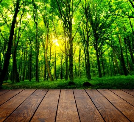 草の背景で部屋のインテリアに木製のテクスチャの背景