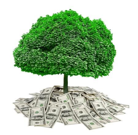 mucho dinero: gran mont�n de dinero. d�lares en fondo blanco y el �rbol. finanzas