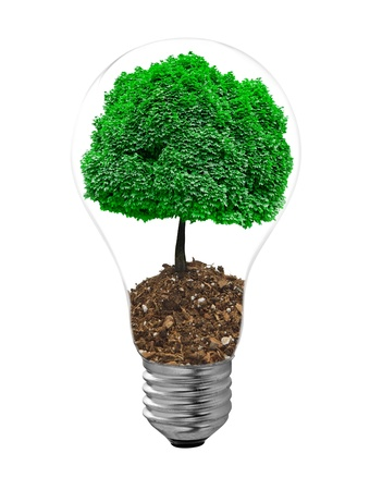 overuse: bulb and tree grass on a white background