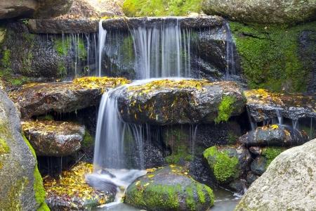 숲에있는 폭포. 돌, 물, 이끼의 아름 다운 배경. 스톡 콘텐츠