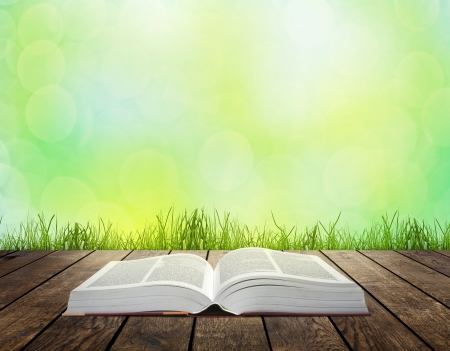 Open book on wooden plank over sunset rays. Education concept background photo