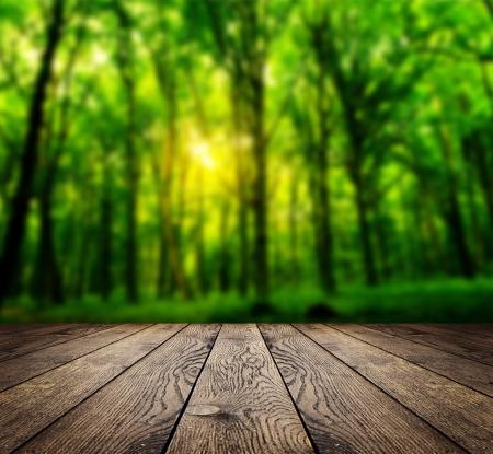 森背景の室内で木材のテクスチャ背景 写真素材