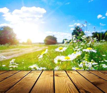 wood lawn: flower